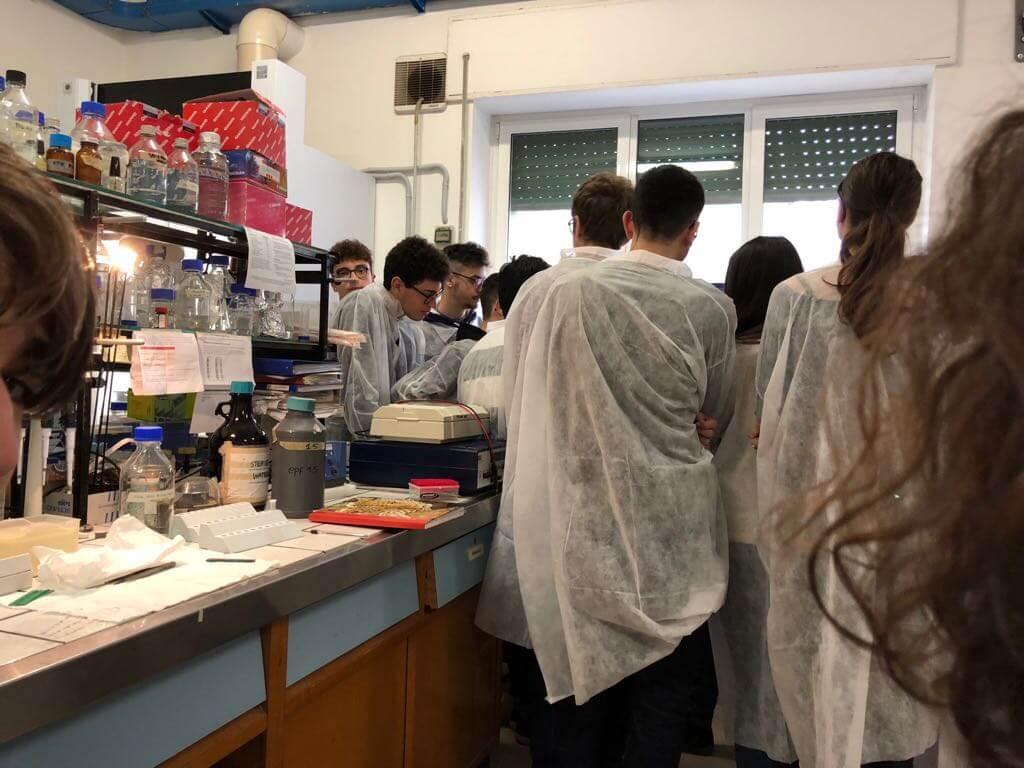 i ragazzi dello Scientifico all'IPSP