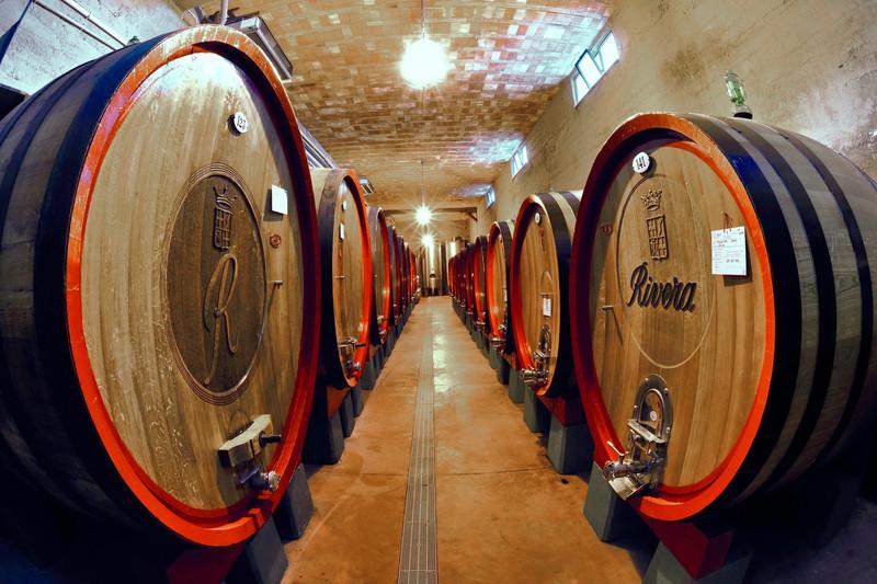 Il vino a braccetto con la cultura per un weekend frizzante