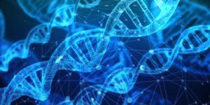Ma la dieta genetica funziona davvero?